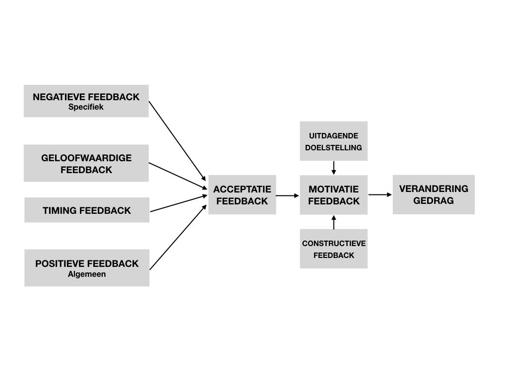 feedback organigram