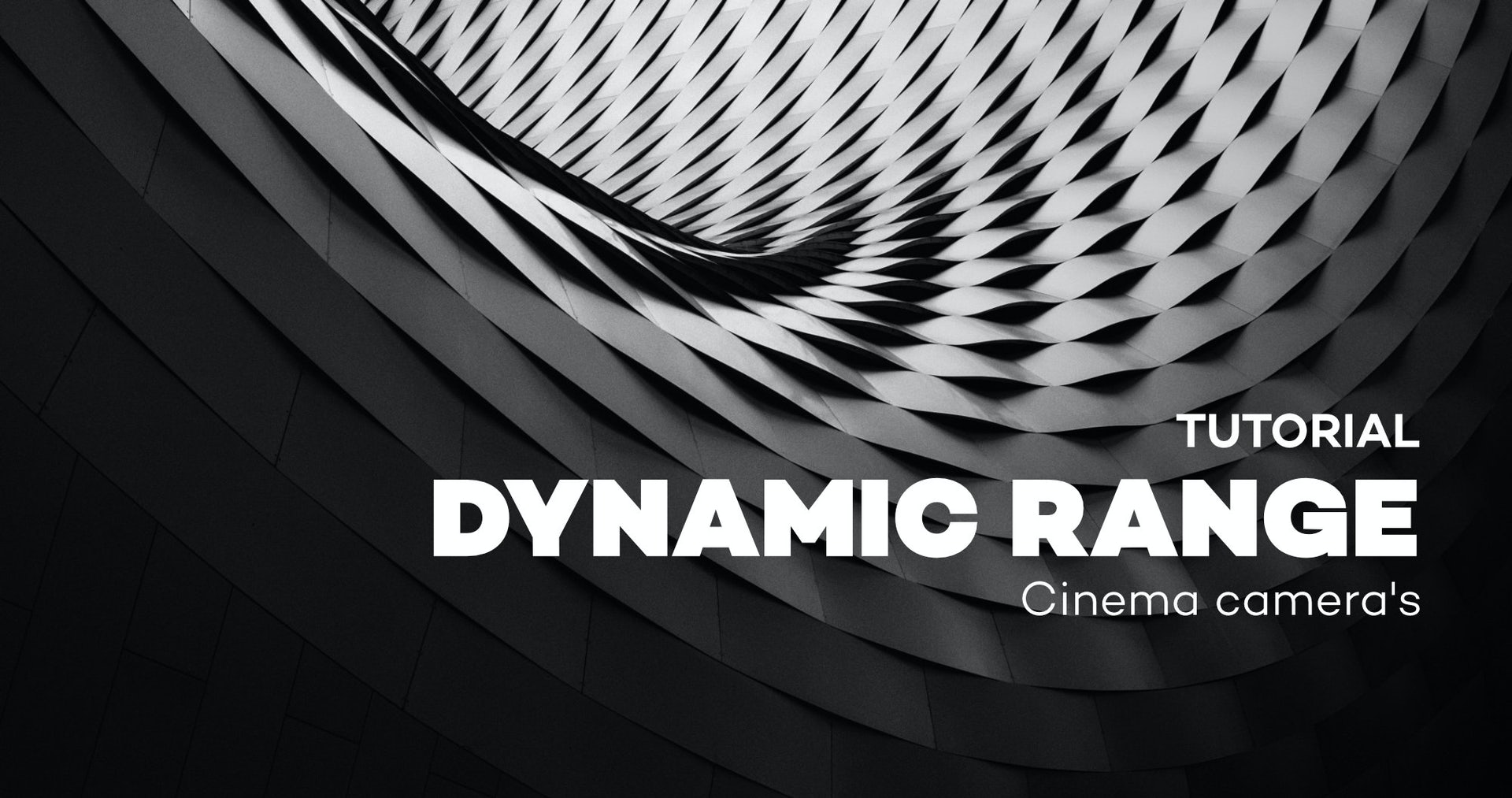 Cinema Cameras Dynamic Range